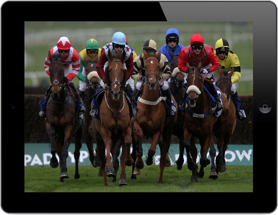 Live Horse Racing Streams